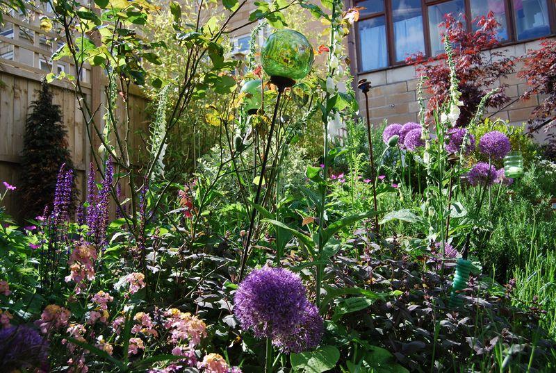 Our Garden_17