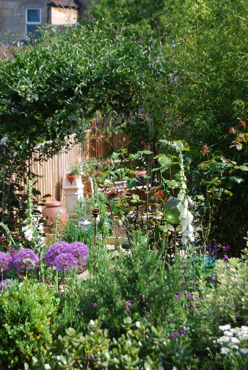 Our Garden_33