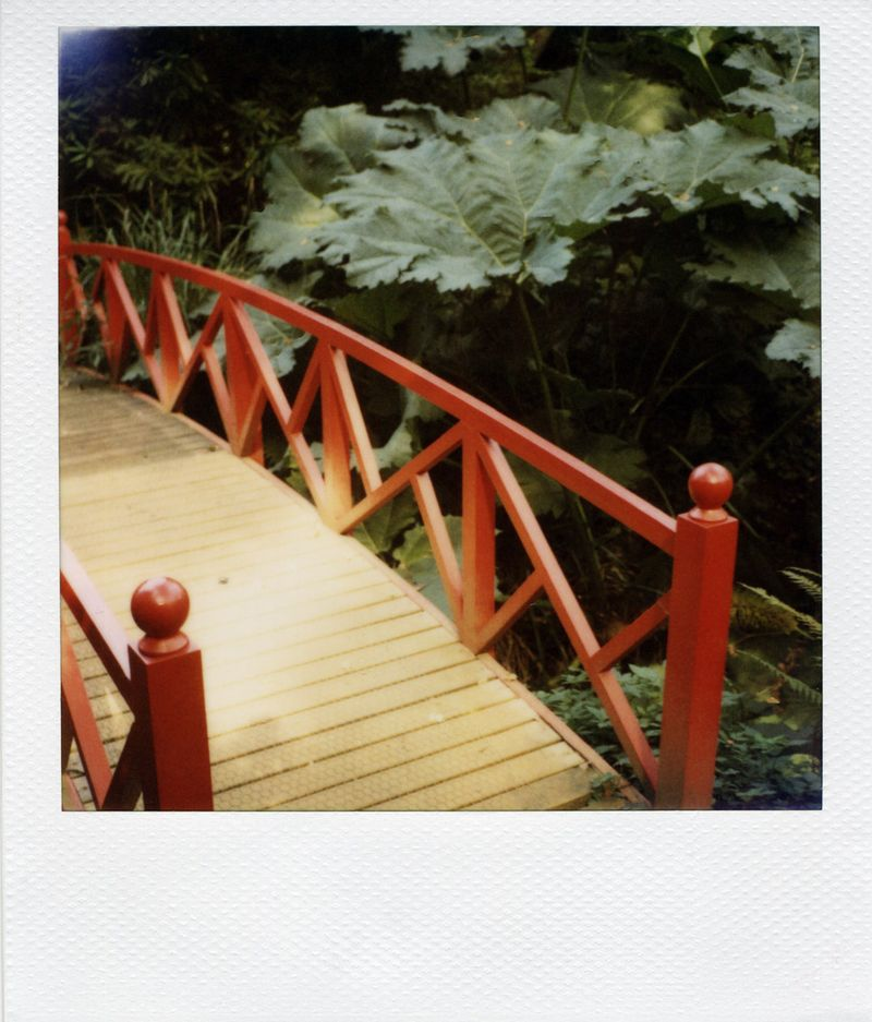 Abbotsbury-Polaroid-(for-we